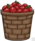 REF103 - Bushel basket Of Apples