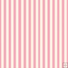 REF729- Pink And White Stripes